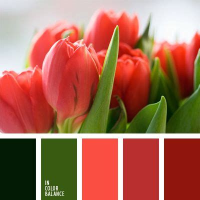red and green color combination 23 best red and green images on pinterest color