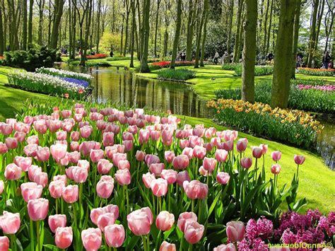 wallpaper taman bunga ros galeri gambar taman bunga yang menakjubkan pernik dunia
