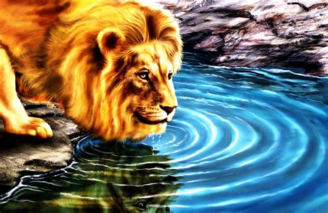 wallpaper 3d lion 3d wallpaper desktop backgrounds lion wallpapersafari