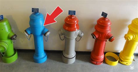 why are hydrants different colors this is what hydrant colors i m a useless info
