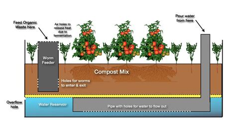 wicking beds wicking bed gardens wicking bed ideas for the house