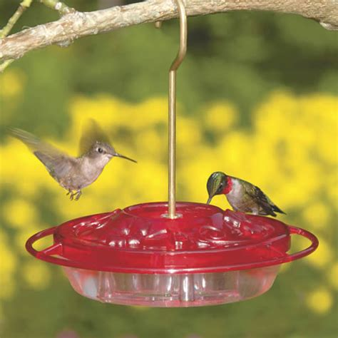Fancy Hummingbird Feeders duncraft aspects fancy hummingbird feeder