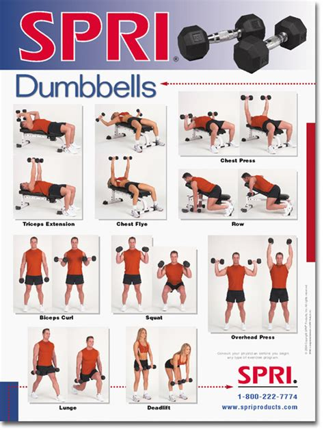 weight bench exercises chart barbell workout chart