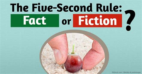 10 second rule food floor should you follow the five second rule for food
