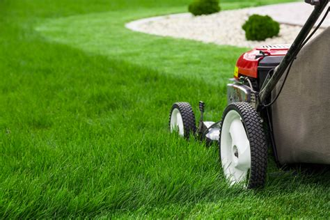 10 mistakes to avoid when building a green home freshome com 10 mistakes to avoid when starting a lawn mowing business