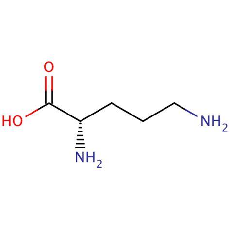 L-Ornithine: Arginine's Overlooked Metabolic Child ... L Arginine Structure