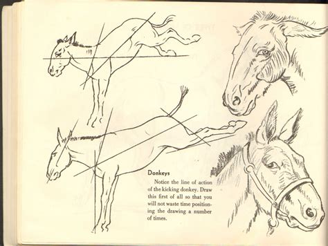 how to draw doodle creatures drawing horses img 37 jpg