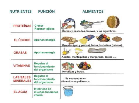 preguntas esenciales del ser humano historia natural de la dietologia