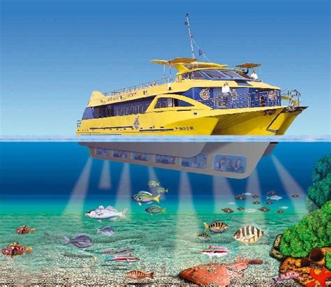 boat trips costa brava 189 best images about l estartit spanje on pinterest