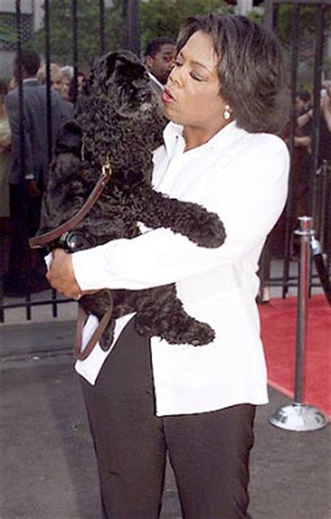 Winfrey Dedicates Show To Late by Labels Celebirty Dogs O Oprah