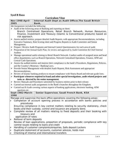 professional internal auditor resume template page 3