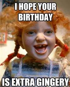 Ginger Memes - happy birthday sister in law quotes and meme hubpages