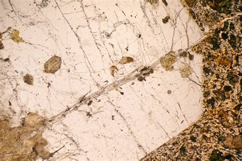 sanidine thin section sanidine phonolite kaiserstuhl germany thin section