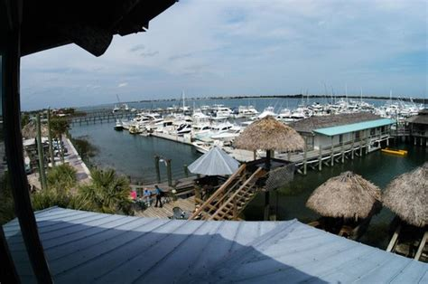 conch house marina restaurant picture of the conch house marina resort st augustine tripadvisor