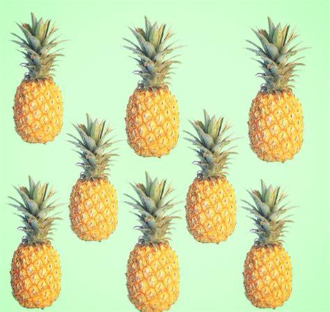 pineapple wallpaper pineapple background tumblr