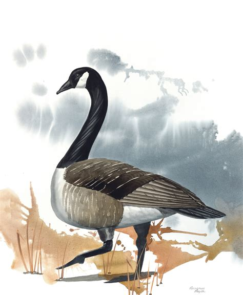 10 inch framed matted geese canadian goose print