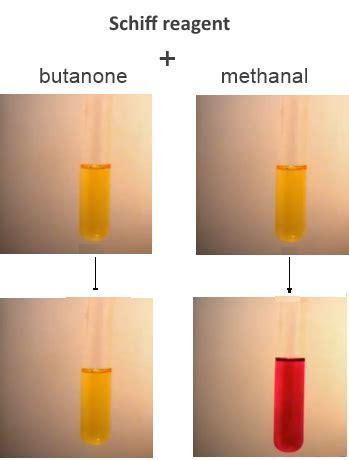 schiff reagent the schiff test for aldehydes