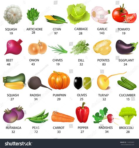 vegetables with 0 calories illustration set vegetable calories on white stock vector