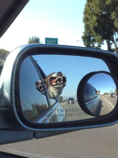 side view mirror   friends car