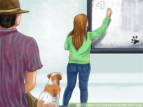 how to dogs to get along with other dogs 3 ways to make your get along with other dogs wikihow
