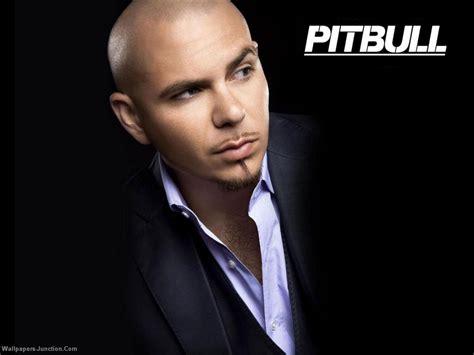 pitbull the pitbull wallpaper pitbull rapper wallpaper 25094094