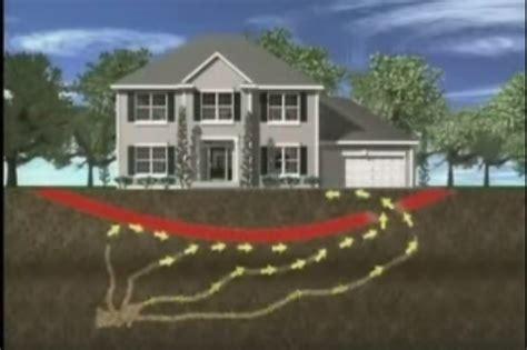 house pest control termite control services