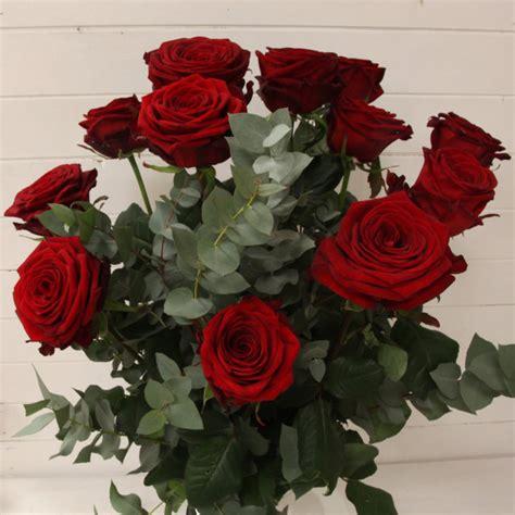 foto fiori rosse confezione di rosse da 1 a 50 co dei fiori