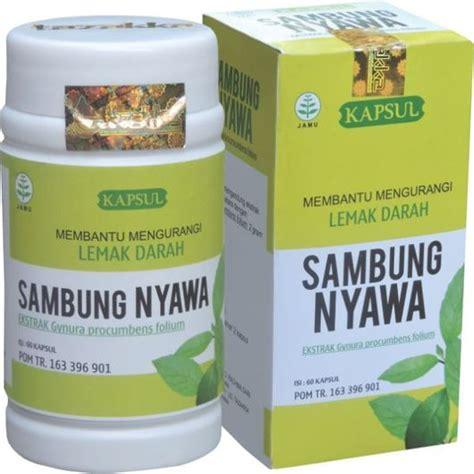 Obat Untuk Mempercepat Pembakaran Lemak obat herbal alami untuk penyakit kolesterol atau lemak darah
