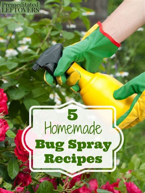 organic garden pest recipe 5 bug spray recipes