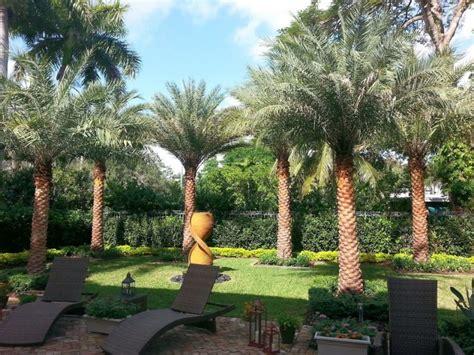landscape design miami miami landscaping designers installation maintenance