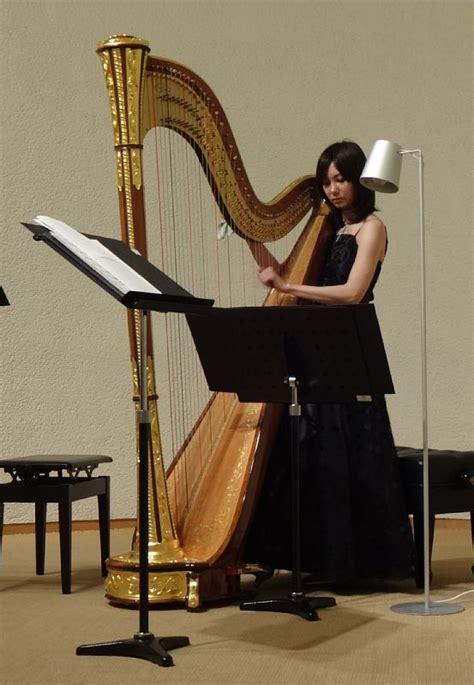 Harmonika Pitch Instrument wiki harp upcscavenger