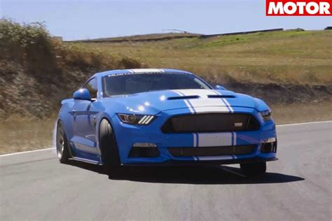 2017 Snake Price by 2017 Shelby Snake Review