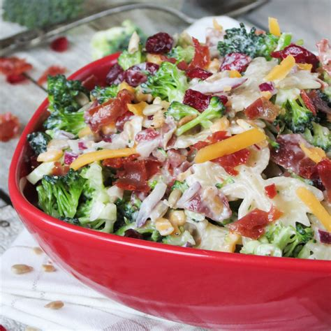 yummy pasta salad broccoli cranberry pasta salad yummy addiction