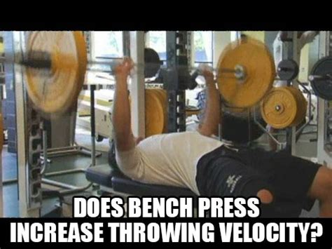 baseball bench press baseball bench press archives increase pitching velocity