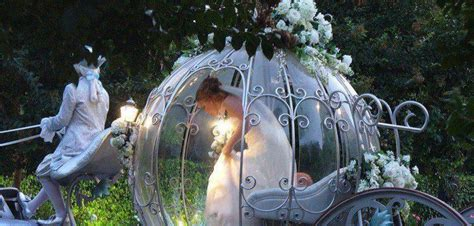 Fairytale Wedding Pictures, Photos, and Images for