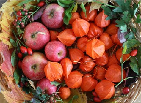Herbstdeko Fenster Bestellen by Herbstdeko Mit Lionblumen Handmade Kultur