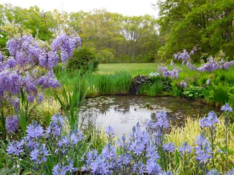 cottage gardens cottage garden designs we hgtv