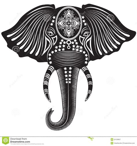 elephant head royalty free stock photography image 25159957