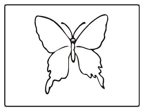 butterfly coloring pages momjunction butterfly coloring pages