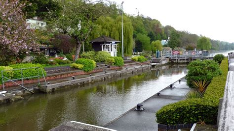 thames river walk musings of the puppet lady thames path henley to shiplake