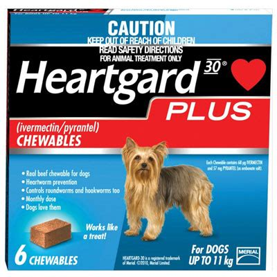 heartgard plus for dogs up to 25 lbs heartgard plus for dogs buy heartgard plus heartworm chew tablets canadavetexpress