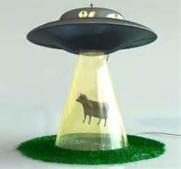 strange lamps most funny pictures weird bizarre strange stuff perfect