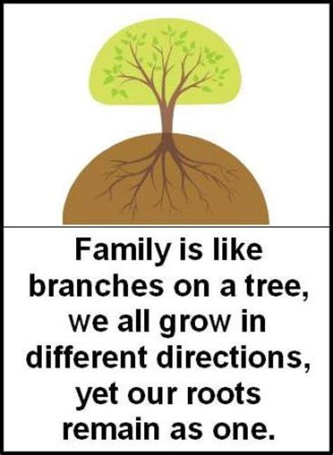 roots and branches quotes like success