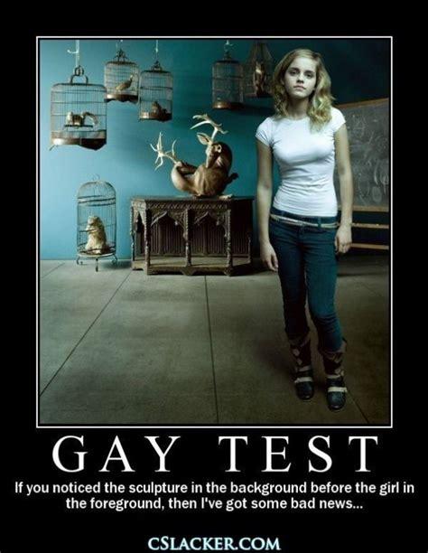 Gay Test Meme - fail proof gay test the funny pinterest gay memes