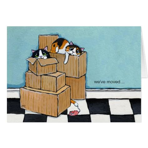 we ve moved template 3 cats boxes we ve moved note card zazzle