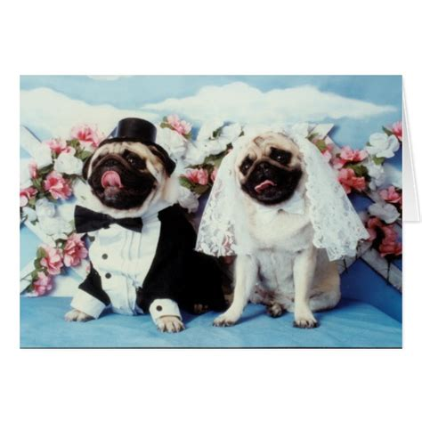 wedding pug pug wedding card zazzle