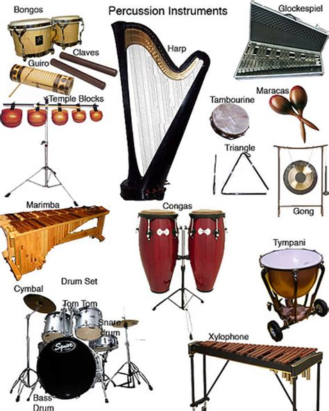 percussion section percussion section flickr photo sharing