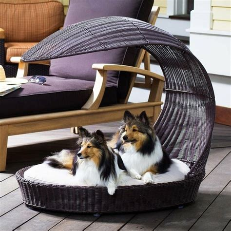 outdoor dog bed outdoor dog bed lounger dogs puppies 3 pinterest