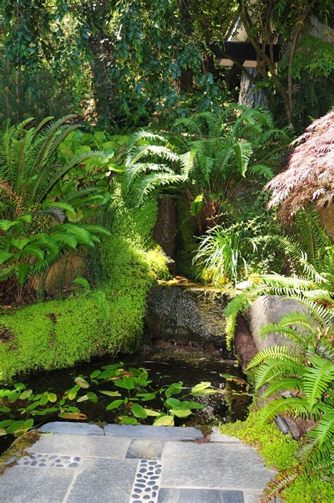 tropical garden ideas landscape tropical with flower bed louvered windows