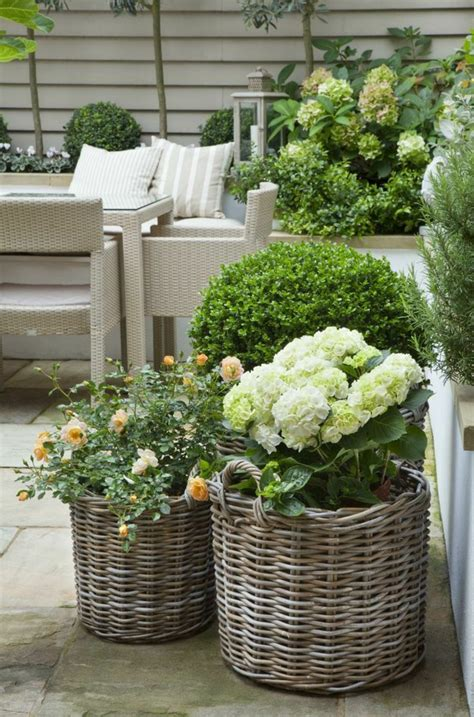 potted plants in the garden garden ideas with lots of